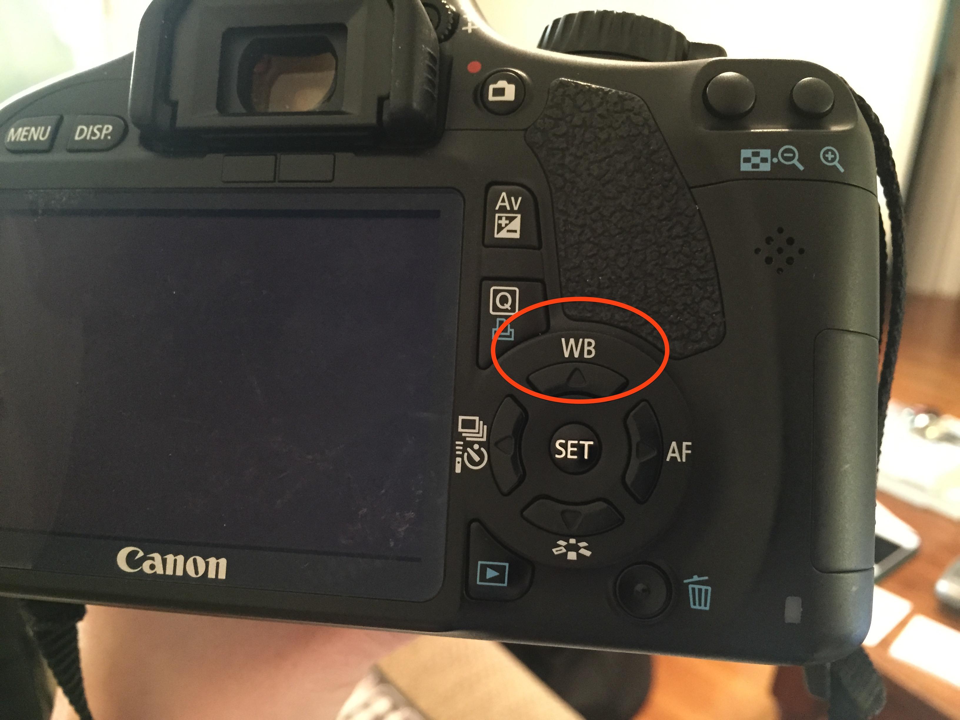 DSLR Photography Class Recap - RunEatSnap