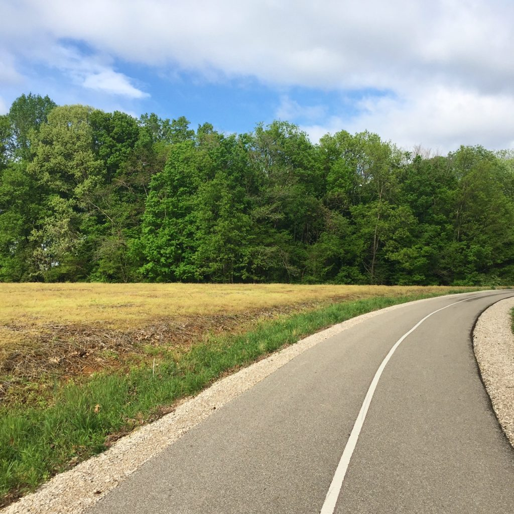 Half marathon training run